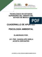psicoambi
