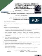 04 Plasmólisis_elodea (2)
