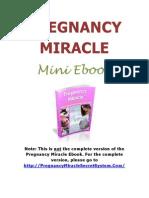 Mini E-book