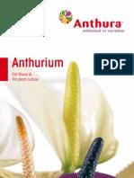 Anthurium Catalogue
