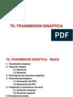 Fisiología I_T9_Transmisión sináptica