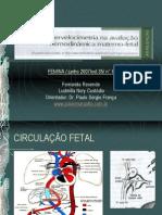 Doppler mica Fetal (1)