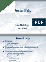 Dental Pulp