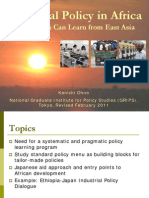 Industrial Policy in Africa, What Africa Can Learn From East Asia 2011