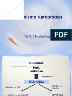 Metabolisme-KH-ok2