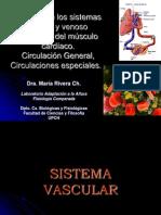 3er Parcial Estructura Yfuncion-sistema_vascular_2011