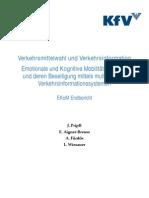 Pripfl 2010 Verkehrsmittelwahl Und Verkehrsinformation