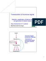 Hormones Lecture 2