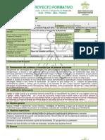 Proyecto Formativo Tecnico en Diseño e Integracion de Multimedia (1)
