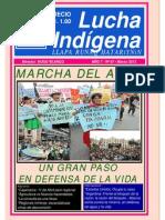 Lucha Indigena 67