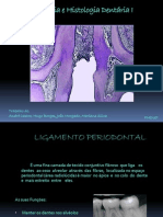 Anatomia e Histologia Dentária I final