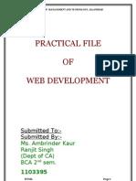web file[1]