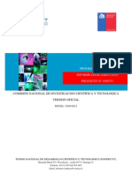 Informe Final Ejecutivo 2012