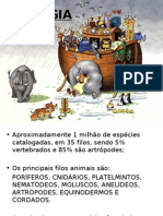 INTRODUÇÃO À ZOOLOGIA, Protistas