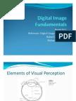 Elements of Visual Perception