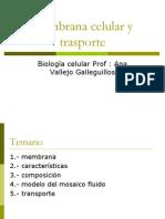 membrana y transprte