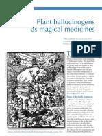 Plant Hallucinogens as Magical Medicines