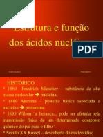 1-Ácidos nucléicos