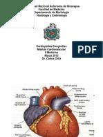 Cardiopatías congénitas 09
