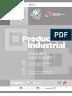 Guía profesional, PRODUCCIÓN INDUSTRIAL, CECyTEH Gobierno Hidalgo. 2012