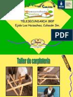Telesec-Huizaches