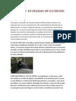 Copia de Nuevo Documento de Microsoft Office Word