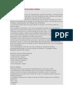 CANTAUTORES Y GRUPOS DE MÚSICA URBANA