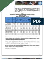 Informe Ejecutivo Ipc Febrero 2012
