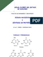 Acidos Nucleicos y Sintesis de Proteinas