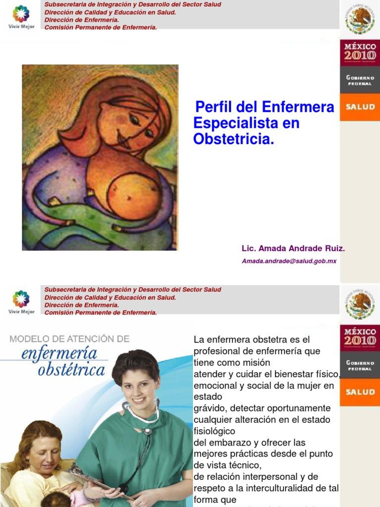 Perfil de Enfermera Obstetra (1)