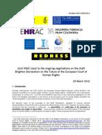 Joint NGO Statement on Draft Brighton Declaration