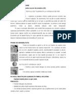 Fisa de Document Are Test Vopsea