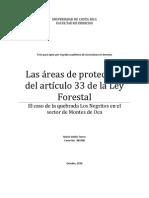 Las Areas de Proteccion Del Articulo 33 de La Ley Forestal - El Caso de La Quebrada Los Negritos en El Sector de Montes de Oca