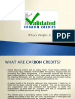 Why Buy Carbon Credits?