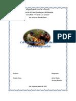 Taxonomía del Suelo venezolano