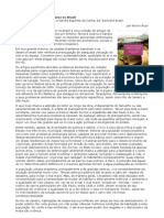 Leitura Crítica e Analítica, Profª Angela Maria - Resenha ''Impactos Ambientais Urbanos no Brasil''