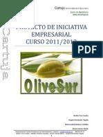 OliveSur