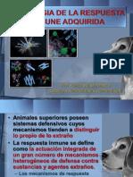 Inmunofisiologia 2012 CONCEPTOS BÁSICOS