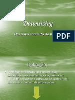 1242397923_downsizing