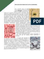 practica14(1)