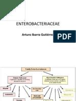 enterobacetrias