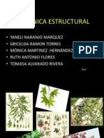 Botanic A