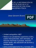 Zonas homogéneas físicas[suelos]
