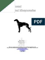 Greyhound Health Packet