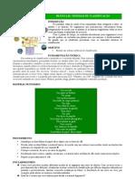 Sistemas de Classificação