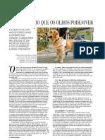 Reportagem Cães-Guias - Revista Regional