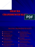 Trauma Craneoencef 2