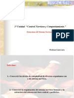 3° U1. CONTROL NERVIOSO Y COMPORTAMIENTO