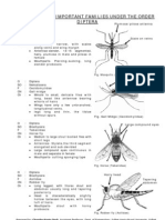 Study on the Insects of Order Diptera