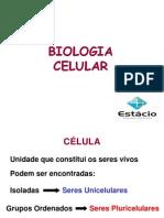 Bio- 2012- aula 1